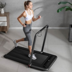 Flow Fitness DTM200i walking treadmill