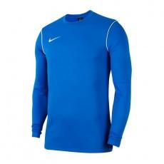 Nike Park 20 Crew Jr BV6901-463 sweatshirt