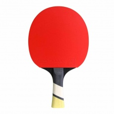 Cornilleau Perform 600 table tennis bats
