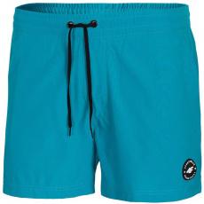 4F M H4L21 SKMT001 35S shorts
