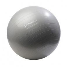 Anti-Burst gym ball 55 cm silver