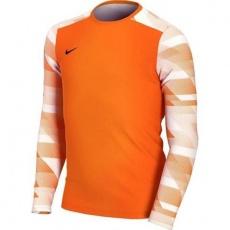 Goalkeeper jersey Nike Dry Park IV JSY LS JR CJ6072-819 L