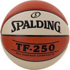 Basketball NBA TF-250 Indoor / Outdoor two Tone