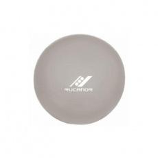 Gym Ball 65cm silver + pump
