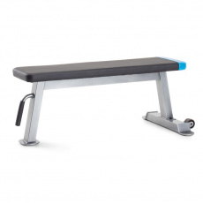 Proform Carbon Strength PFBE09620 horizontal bench