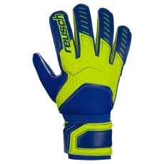 Goalkeeper gloves Reusch Attrakt SD LTD 50 70 563 2199