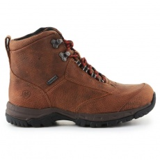 Ariat Berwick Gtx W 10016299 shoes