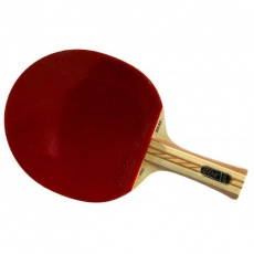 Atemi 4000 table tennis bats