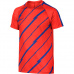 Nike Dry Squad Junior 833008-852 football jersey