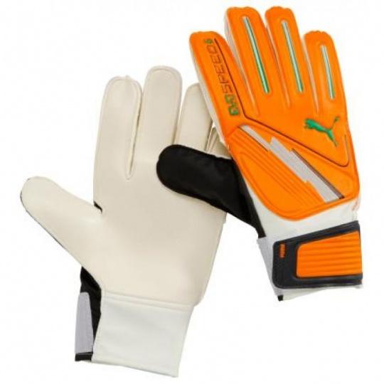 Goalkeeper gloves Puma Evo Speed 6 040887 02