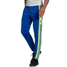 Adidas Squadra 21 Training Pant M GP6451