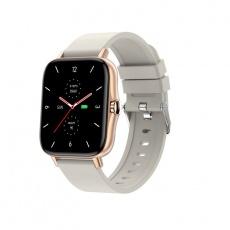 Watch, smartwatch Sport Activity GT gold